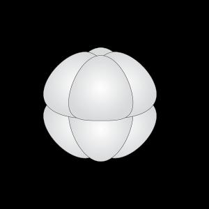 linkedlab-30